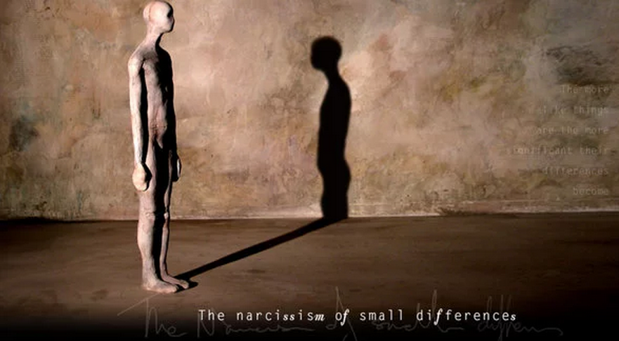 The Narcissism Of Small Differences