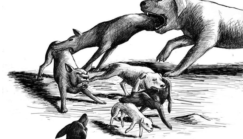 dog_eat_dog_world_by_nerafinuota-d4put1r